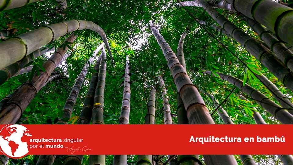 Arquitectura en bambú. Arquitectura singular por el mundo - obra nueva en Córdoba